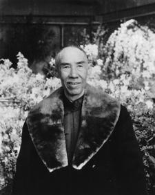 wang xiang zhai, yiquan