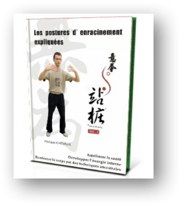 guide enracinement yiquan