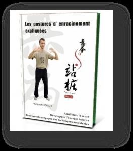 guide enracinement yiquan