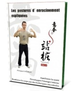 guide gratuit, posture d'enracinement, yiquan kung-fu, nord, Lille