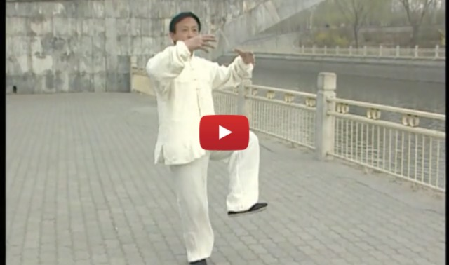 video, yiquan, yao chengguang, kung-fu,arts-martiaux, lille, nord, France