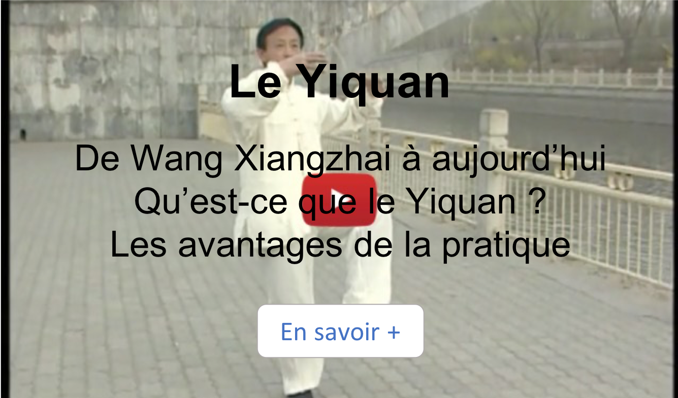 video, yiquan, yao chengguang, kung-fu,arts-martiaux, lille, nord, France, wang xiangzhai