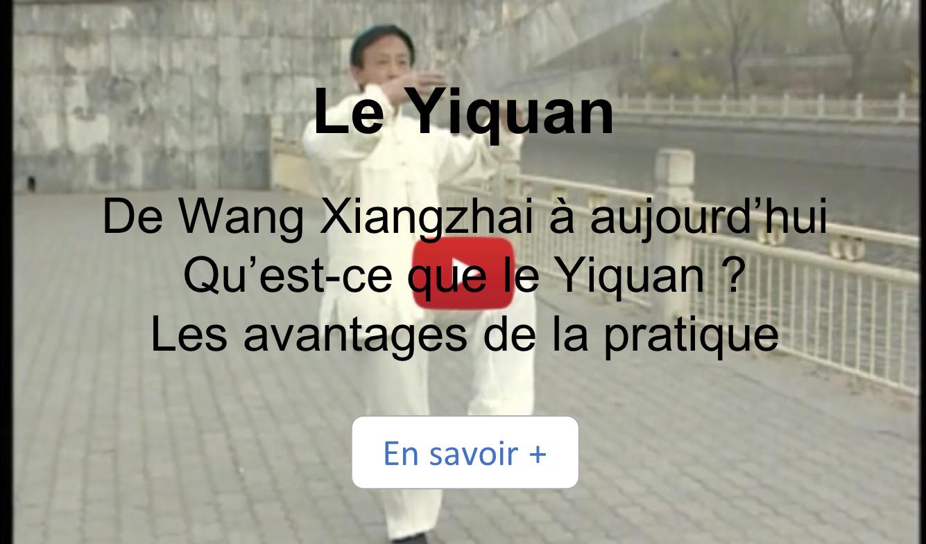 video, yiquan, yao chengguang, kung-fu,arts-martiaux, lille, nord, France, wang xiangzhai